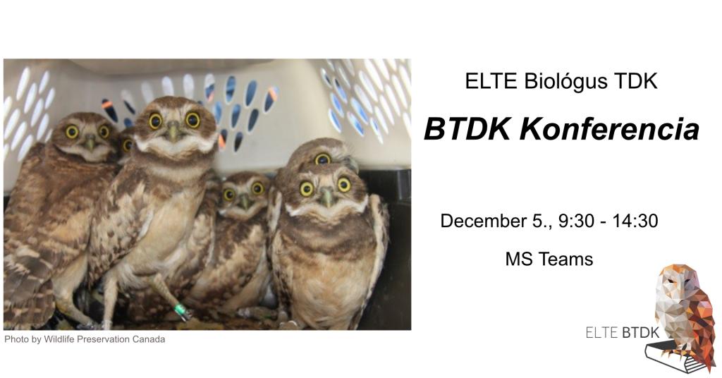 20201205-BTDK_Konferencia